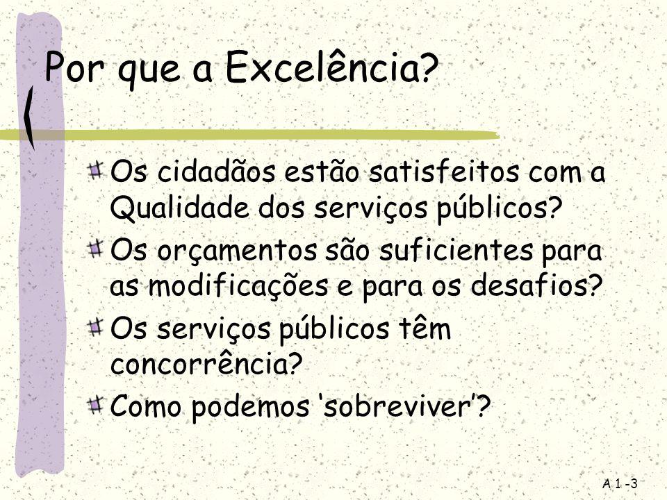 A 1 -3 Por que a Excelência? Os cidadãos estão satisfeitos com a Qualidade dos serviços públicos? Os orçamentos são suficientes para as modificações e