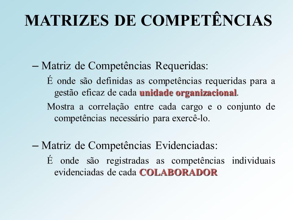 MATRIZES DE COMPETÊNCIAS – Matriz de Competências Requeridas: unidade organizacional É onde são definidas as competências requeridas para a gestão efi