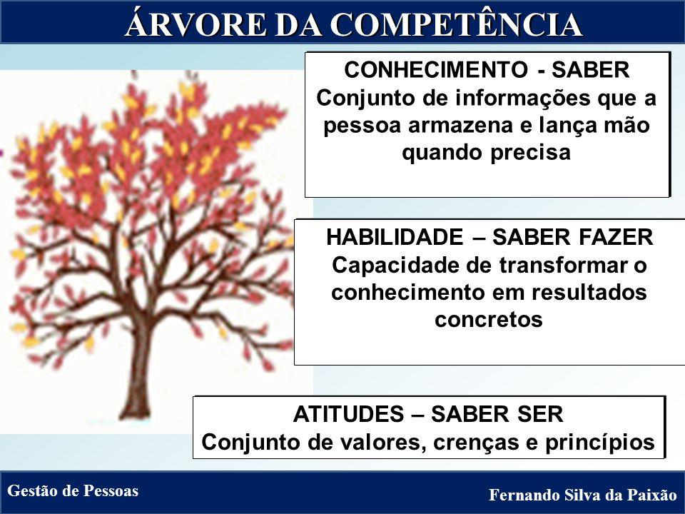 Mudanças no mercado mercadoEstratégiaempresarialEstratégiaempresarial COMPETÊNCIASORGANIZACIONAISCOMPETÊNCIASORGANIZACIONAIS COMPETÊNCIASBÁSICAS(pré-requisitos)COMPETÊNCIASBÁSICAS(pré-requisitos)COMPETÊNCIASESSENCIAIS (fator de diferenciação) COMPETÊNCIASESSENCIAIS CONHECIMENTOSHABILIDADESATITUDESCONHECIMENTOSHABILIDADESATITUDES COMPETÊNCIASFUNCIONAIS (funcionários, terceirizados, fornecedores e parceiros) COMPETÊNCIASFUNCIONAIS Fernando Silva da Paixão Gestão de Pessoas