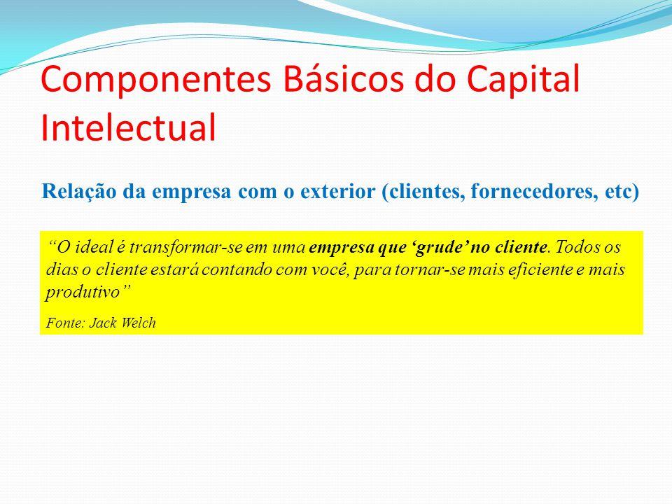 Relação da empresa com o exterior (clientes, fornecedores, etc) Componentes Básicos do Capital Intelectual O ideal é transformar-se em uma empresa que grude no cliente.