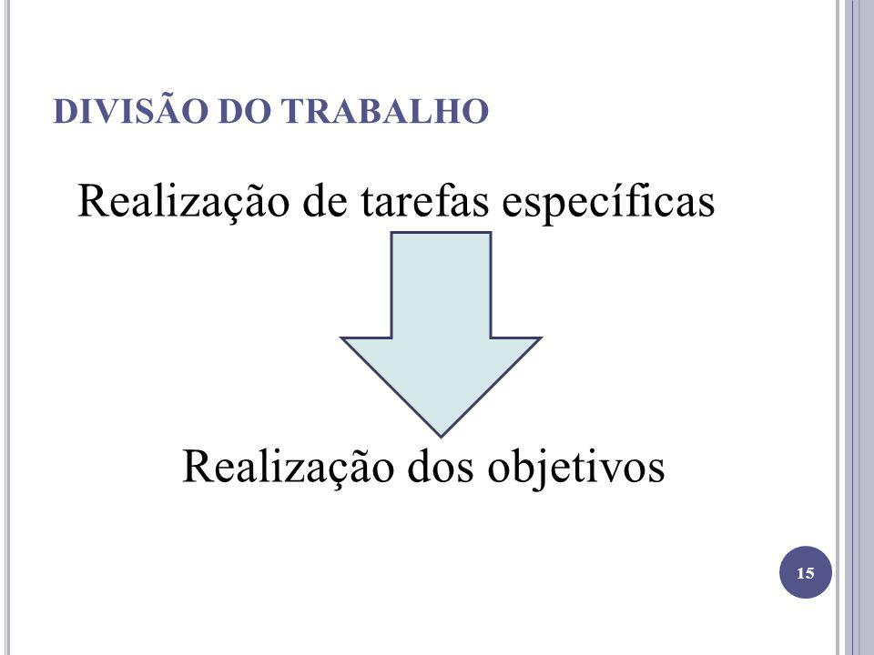 DIVISÃO DO TRABALHO Realização de tarefas específicas Realização dos objetivos 15