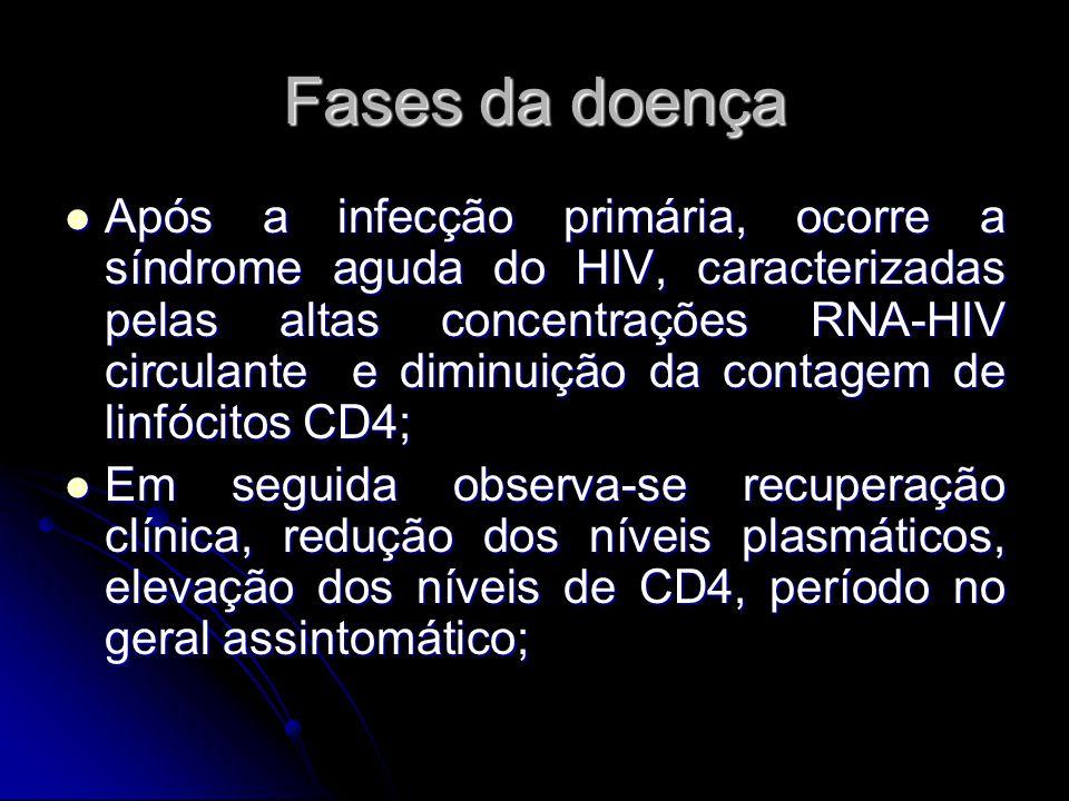 Fases da doença Após a infecção primária, ocorre a síndrome aguda do HIV, caracterizadas pelas altas concentrações RNA-HIV circulante e diminuição da