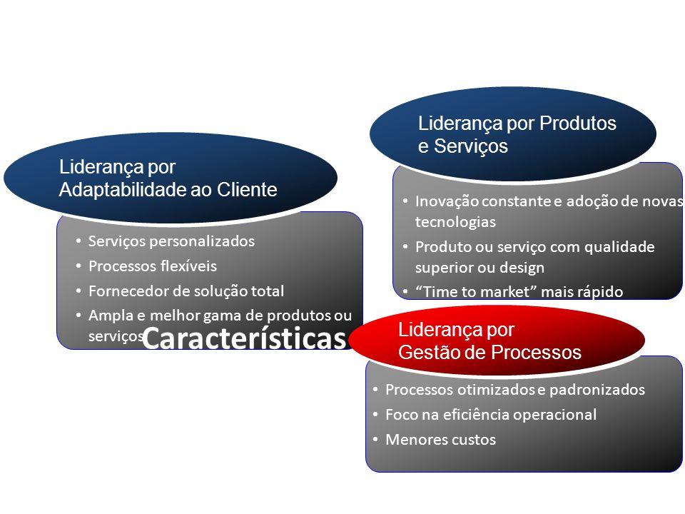 Serviços personalizados Processos flexíveis Fornecedor de solução total Ampla e melhor gama de produtos ou serviços Liderança por Adaptabilidade ao Cl