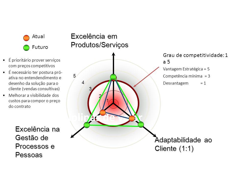 5 4 3 2 Disciplinas de valor Competência mínima = 3 Vantagem Estratégica = 5 Desvantagem = 1 Grau de competitividade: 1 a 5 Excelência em Produtos/Ser