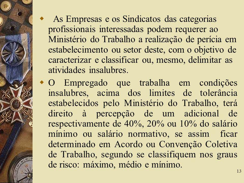 13 As Empresas e os Sindicatos das categorias profissionais interessadas podem requerer ao Ministério do Trabalho a realização de perícia em estabelec