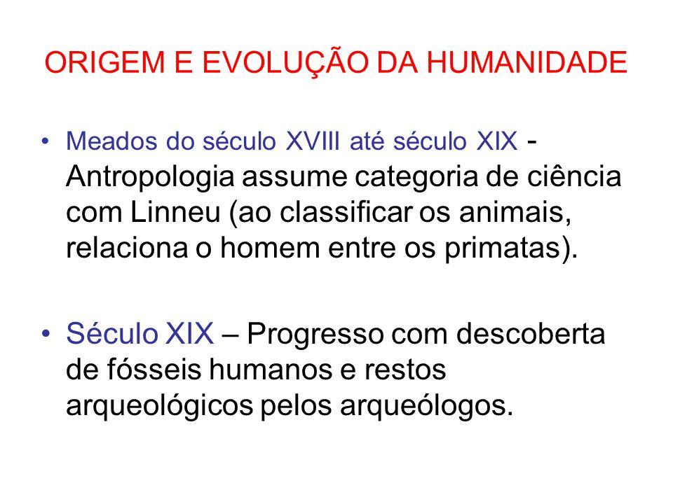 ORIGEM E EVOLUÇÃO DA HUMANIDADE Meados do século XVIII até século XIX - Antropologia assume categoria de ciência com Linneu (ao classificar os animais