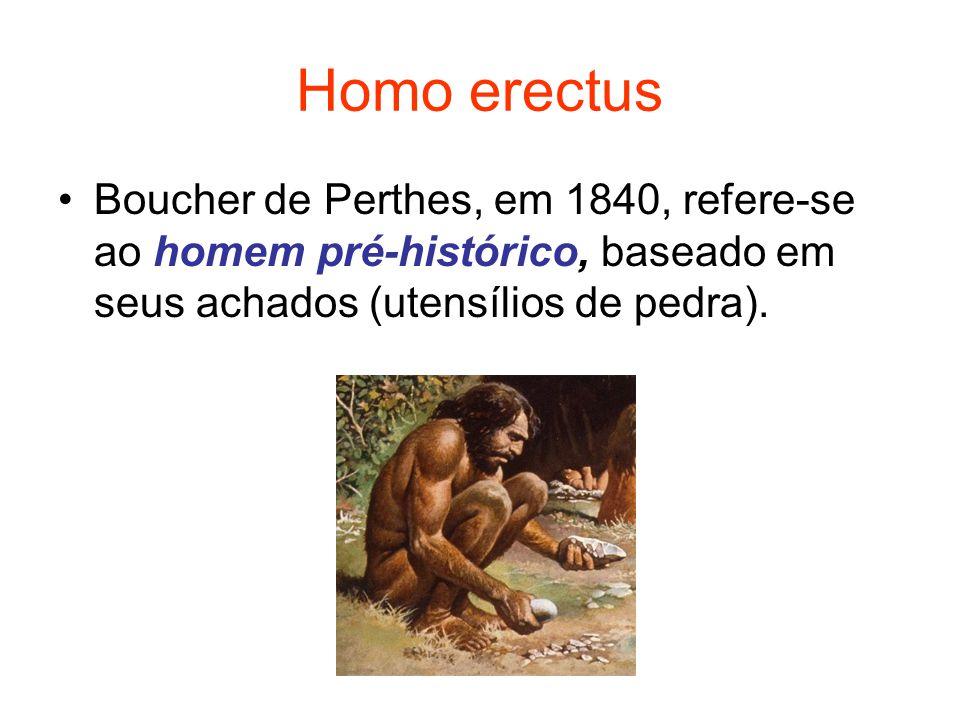 Homo erectus Boucher de Perthes, em 1840, refere-se ao homem pré-histórico, baseado em seus achados (utensílios de pedra).
