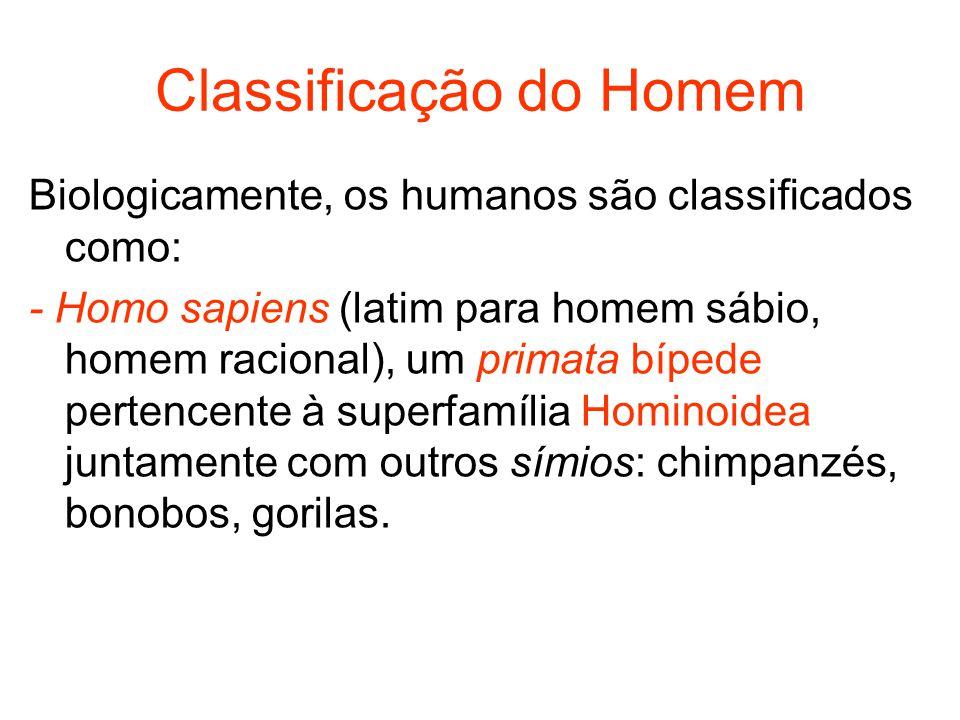 Classificação do Homem Biologicamente, os humanos são classificados como: - Homo sapiens (latim para homem sábio, homem racional), um primata bípede p