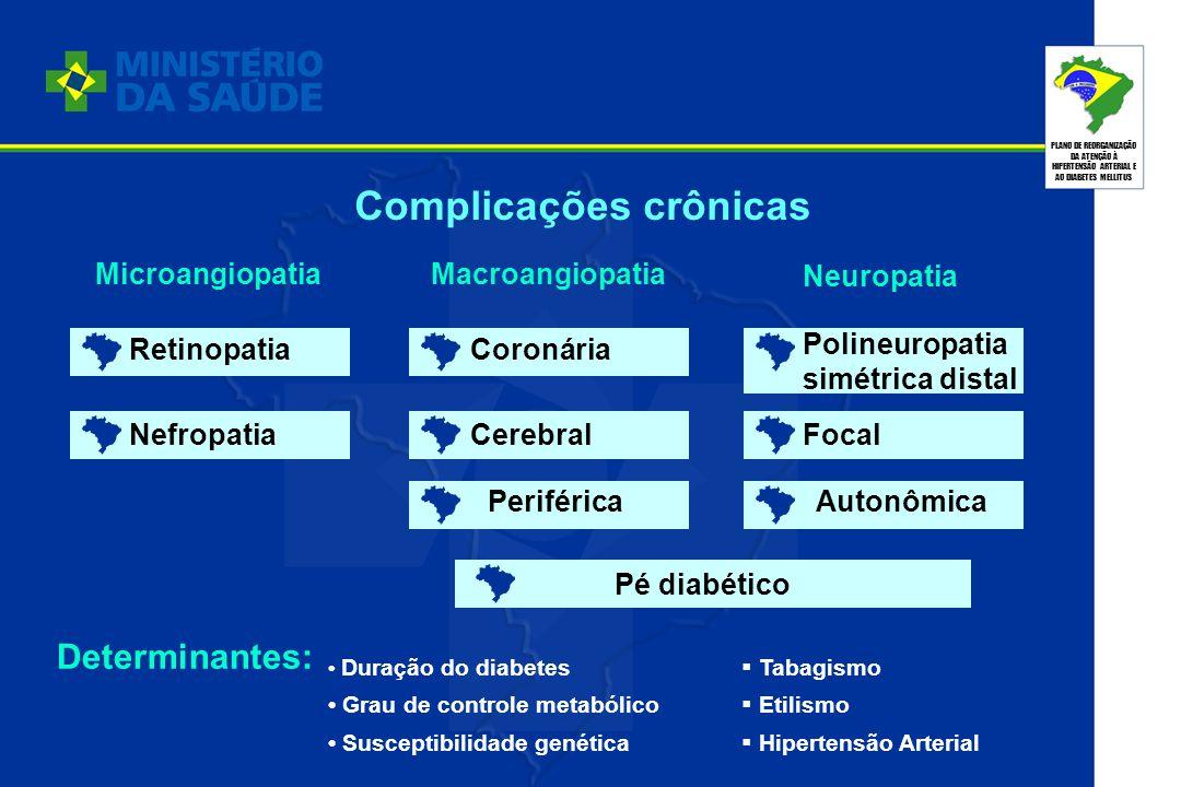 PLANO DE REORGANIZAÇÃO DA ATENÇÃO À HIPERTENSÃO ARTERIAL E AO DIABETES MELLITUS Complicações crônicas MicroangiopatiaMacroangiopatia Neuropatia Retino