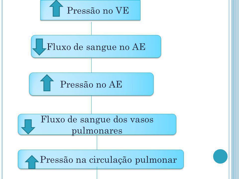 Pressão no VE Fluxo de sangue no AE Pressão no AE Fluxo de sangue dos vasos pulmonares Pressão na circulação pulmonar