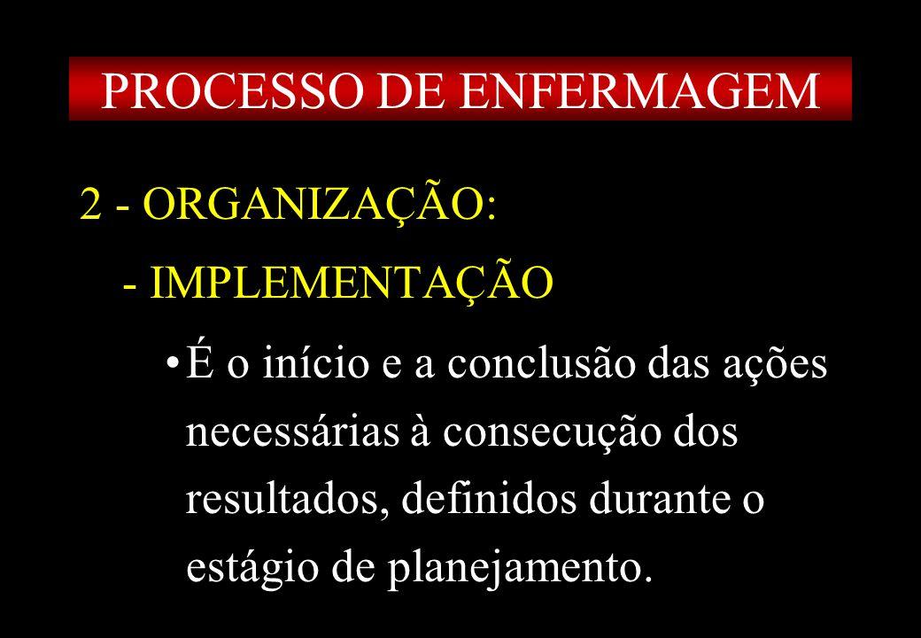 Prof MS Creto Valdivino e Silva 2 - ORGANIZAÇÃO: - IMPLEMENTAÇÃO É o início e a conclusão das ações necessárias à consecução dos resultados, definidos