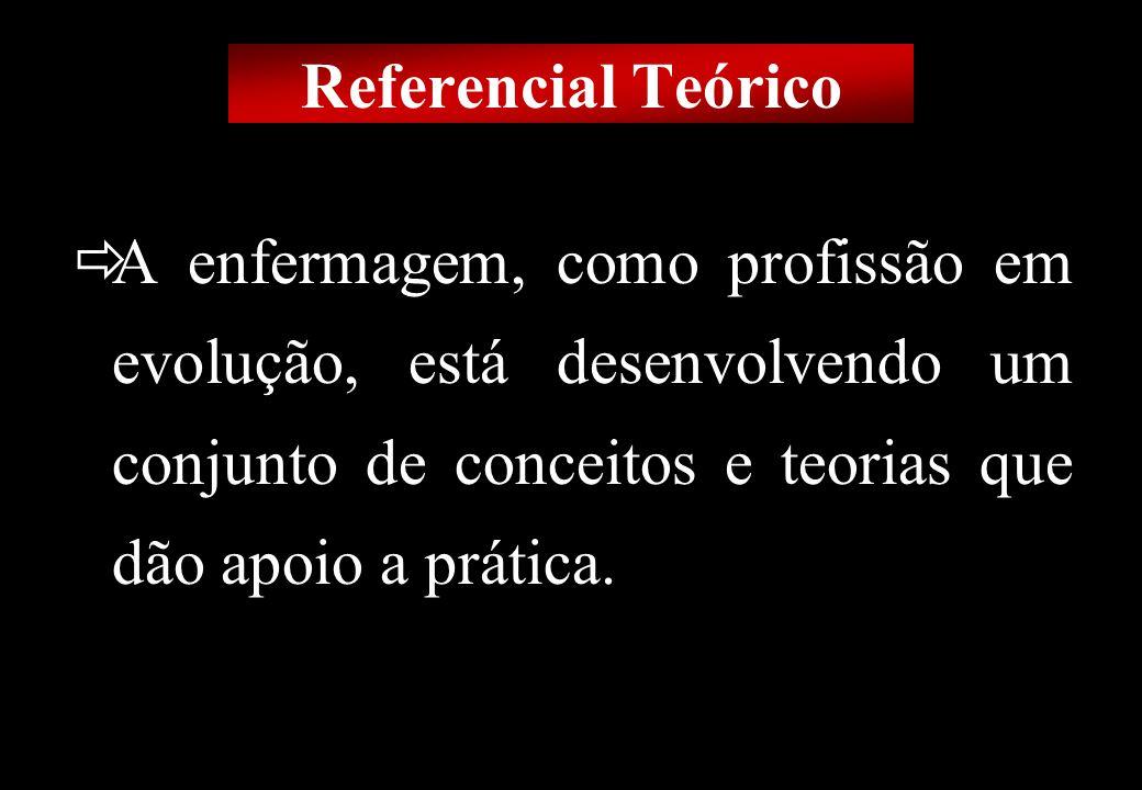 Prof MS Creto Valdivino e Silva Referencial Teórico Idéias Globais Modelos Conceituais Paradigmas Referenciais Teóricos Marcos Conceituais