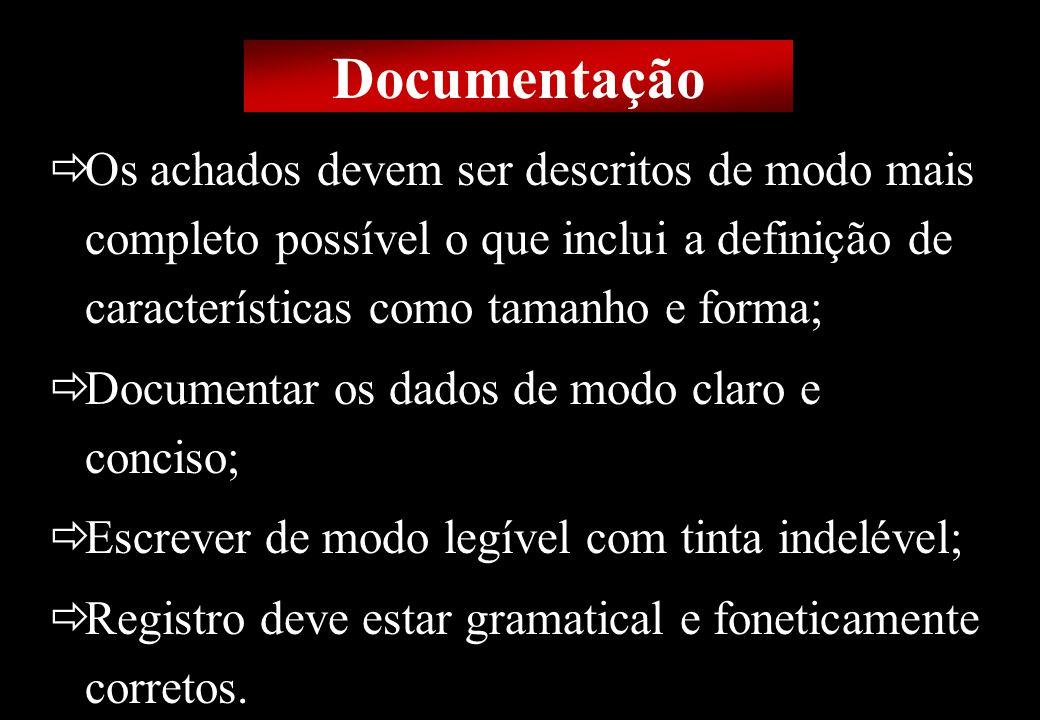 Prof MS Creto Valdivino e Silva Os achados devem ser descritos de modo mais completo possível o que inclui a definição de características como tamanho
