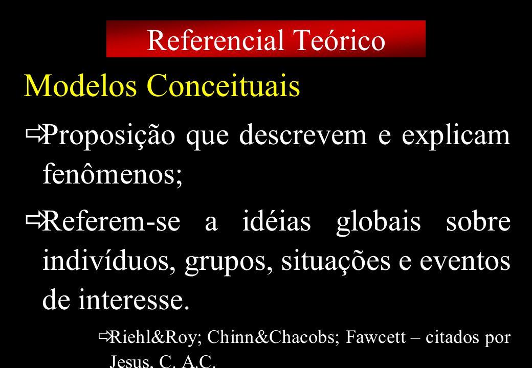 Prof MS Creto Valdivino e Silva Modelos Conceituais Proposição que descrevem e explicam fenômenos; Referem-se a idéias globais sobre indivíduos, grupo