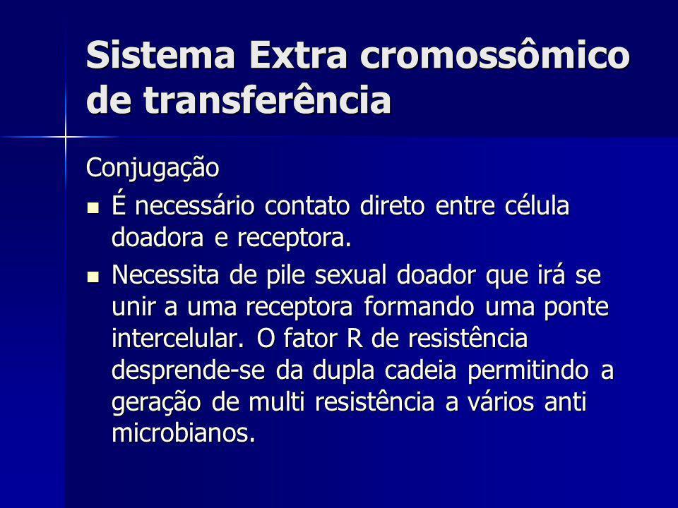Sistema Extra cromossômico de transferência Conjugação É necessário contato direto entre célula doadora e receptora. É necessário contato direto entre
