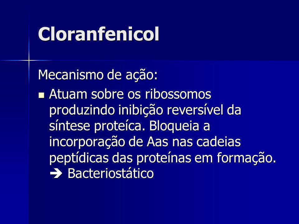 Cloranfenicol Mecanismo de ação: Atuam sobre os ribossomos produzindo inibição reversível da síntese proteíca. Bloqueia a incorporação de Aas nas cade
