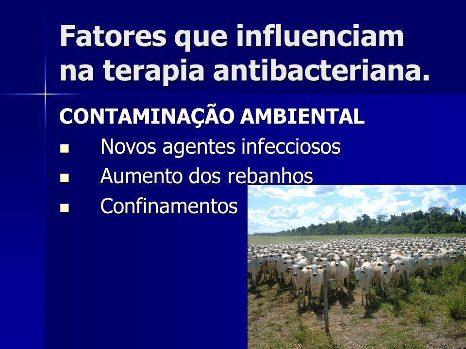 Fatores que influenciam na terapia antibacteriana. CONTAMINAÇÃO AMBIENTAL Novos agentes infecciosos Novos agentes infecciosos Aumento dos rebanhos Aum