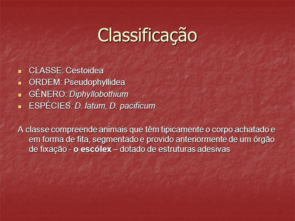 Classificação CLASSE: Cestoidea CLASSE: Cestoidea ORDEM: Pseudophyllidea ORDEM: Pseudophyllidea GÊNERO: Diphyllobothium GÊNERO: Diphyllobothium ESPÉCI