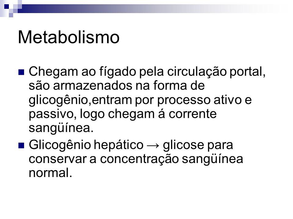 Metabolismo Chegam ao fígado pela circulação portal, são armazenados na forma de glicogênio,entram por processo ativo e passivo, logo chegam á corrent