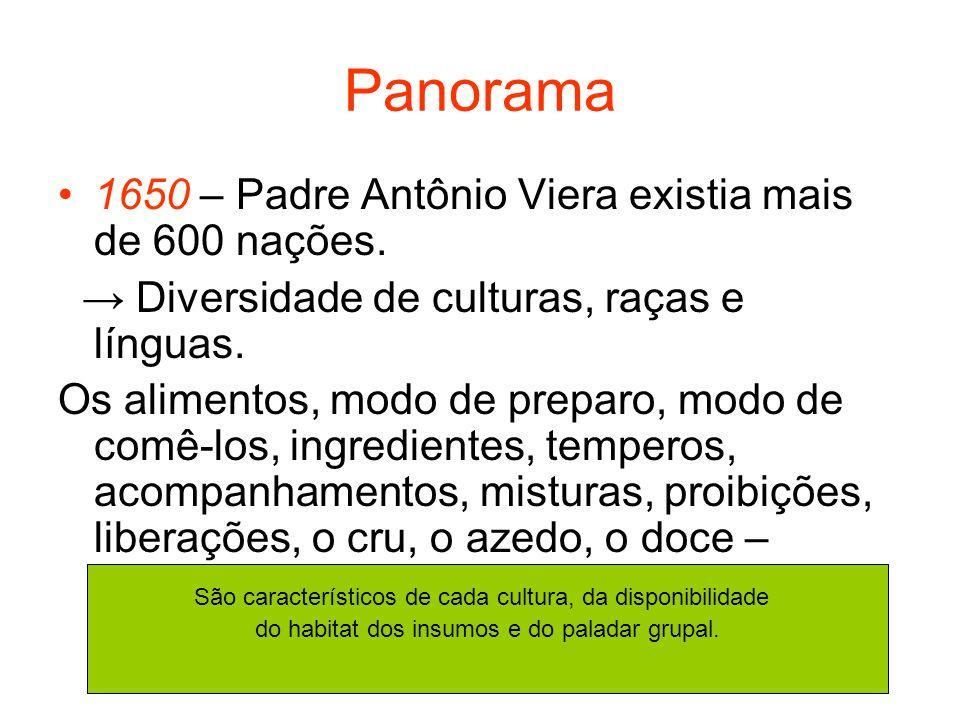 Panorama 1650 – Padre Antônio Viera existia mais de 600 nações. Diversidade de culturas, raças e línguas. Os alimentos, modo de preparo, modo de comê-