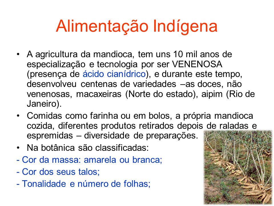Alimentação Indígena A agricultura da mandioca, tem uns 10 mil anos de especialização e tecnologia por ser VENENOSA (presença de ácido cianídrico), e