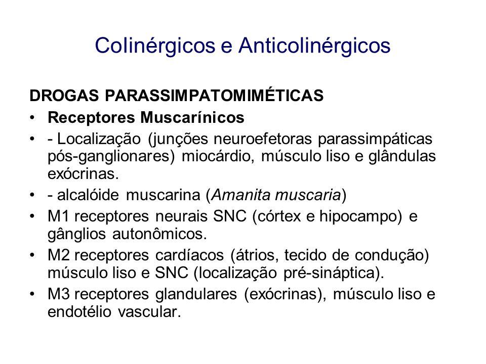 DROGAS PARASSIMPATOMIMÉTICAS Receptores Muscarínicos - Localização (junções neuroefetoras parassimpáticas pós-ganglionares) miocárdio, músculo liso e