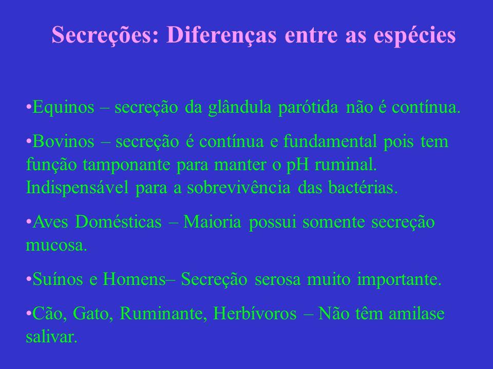 Secreções: Diferenças entre as espécies Equinos – secreção da glândula parótida não é contínua. Bovinos – secreção é contínua e fundamental pois tem f