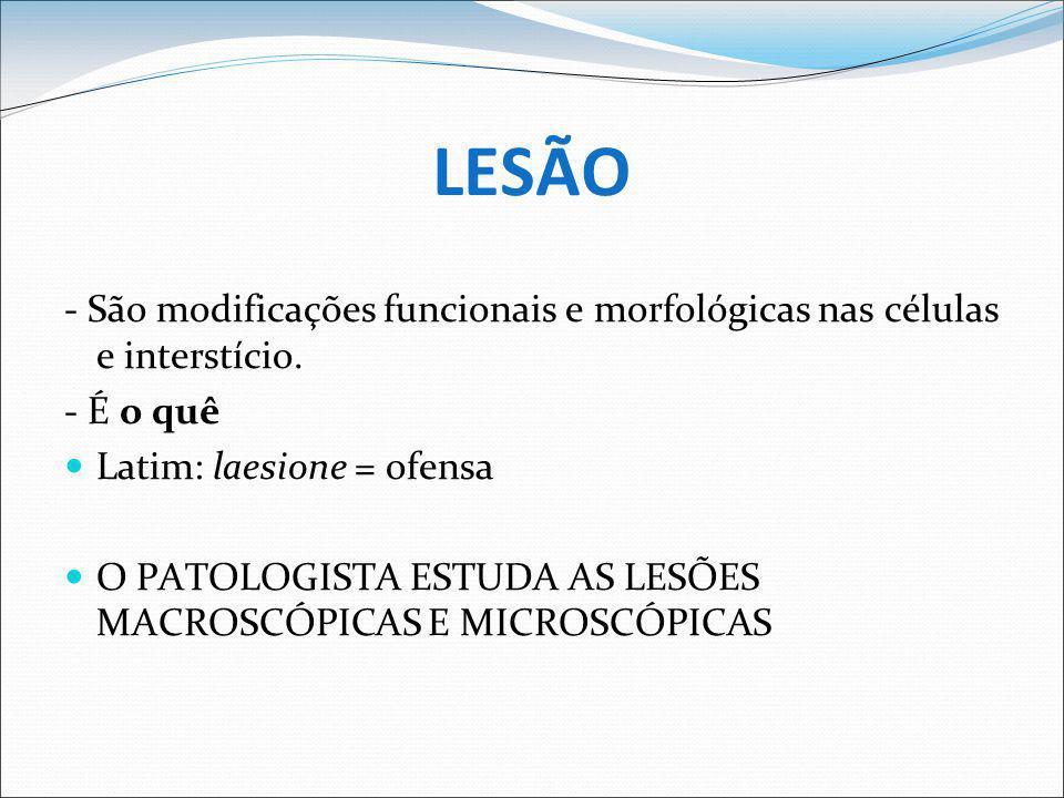- Hormônios: Diabetes ( piodermites, infecções urinárias por Staphylococcus spp).