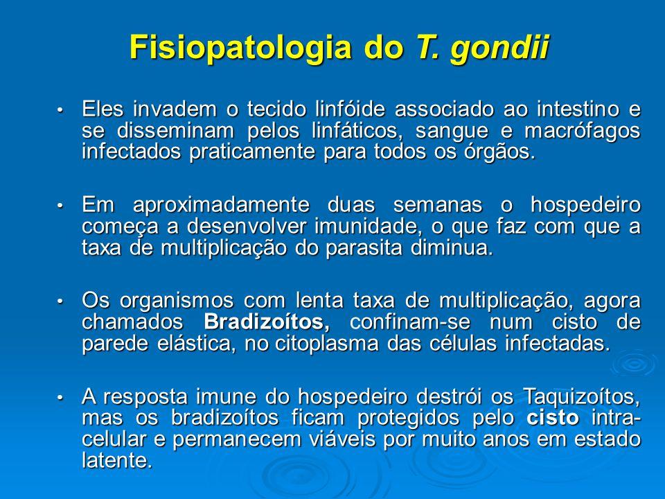 Fisiopatologia do T.