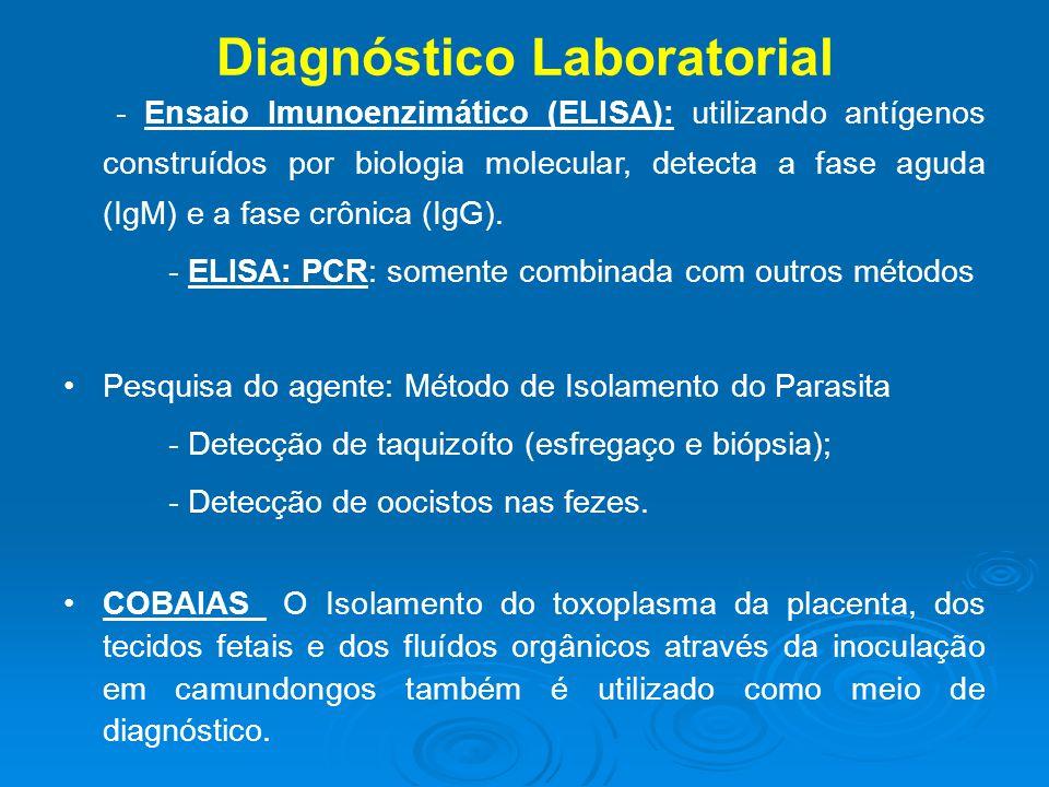 Diagnóstico Laboratorial - Ensaio Imunoenzimático (ELISA): utilizando antígenos construídos por biologia molecular, detecta a fase aguda (IgM) e a fase crônica (IgG).