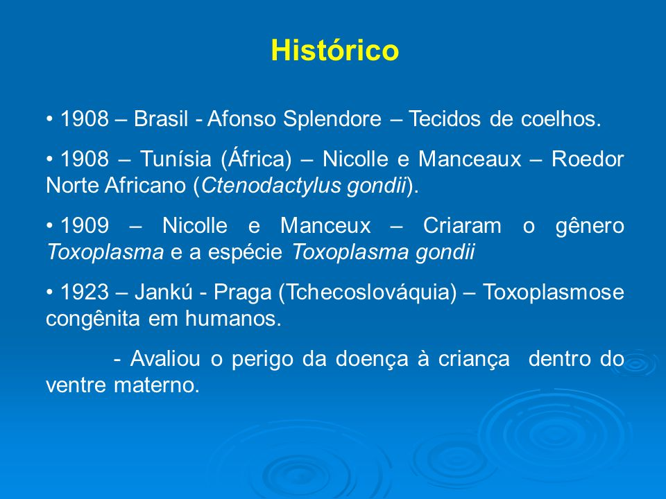 Histórico 1908 – Brasil - Afonso Splendore – Tecidos de coelhos.