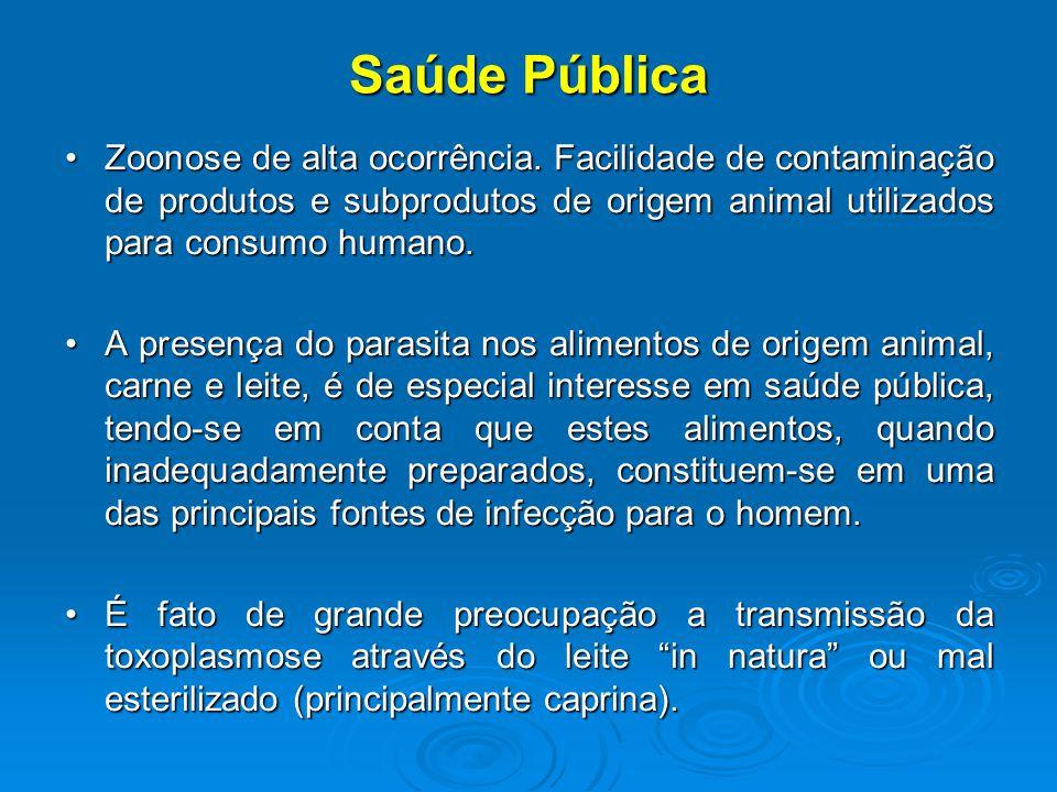 Saúde Pública Zoonose de alta ocorrência.