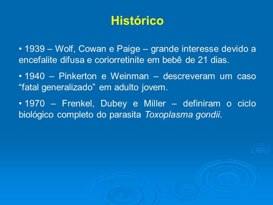 Histórico 1939 – Wolf, Cowan e Paige – grande interesse devido a encefalite difusa e coriorretinite em bebê de 21 dias.