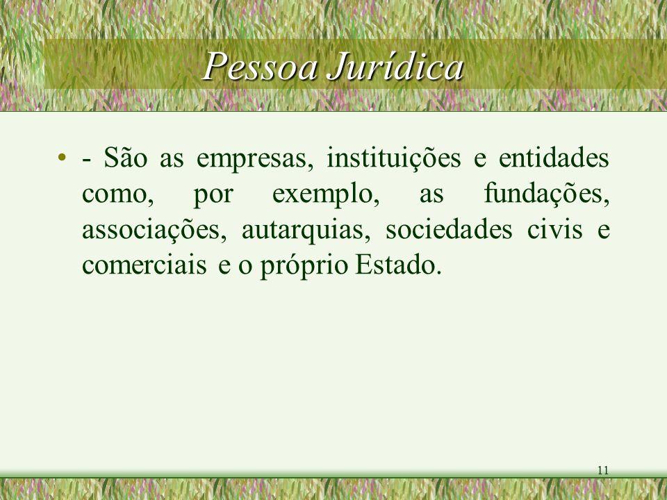 11 Pessoa Jurídica - São as empresas, instituições e entidades como, por exemplo, as fundações, associações, autarquias, sociedades civis e comerciais