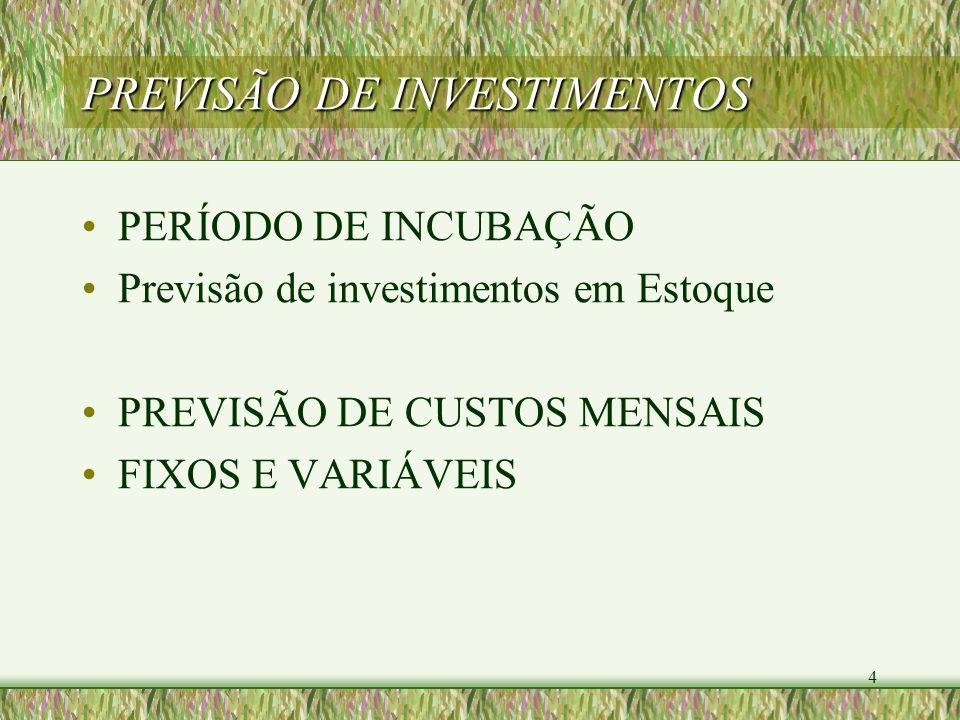 4 PREVISÃO DE INVESTIMENTOS PERÍODO DE INCUBAÇÃO Previsão de investimentos em Estoque PREVISÃO DE CUSTOS MENSAIS FIXOS E VARIÁVEIS