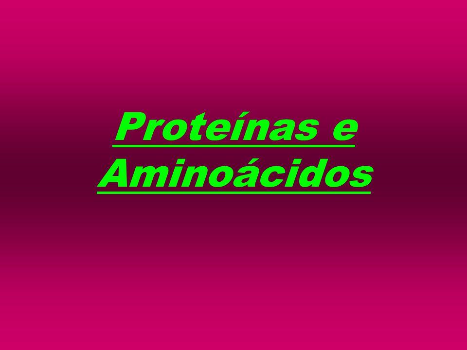 INTRODUÇÃO: DEFINIÇÃO: Compostos à base de C, H, O e N e que têm funções importantes no organismo animal e vegetal.