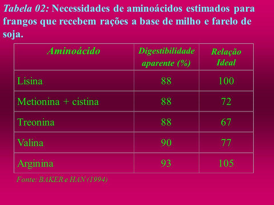 Tabela 02: Necessidades de aminoácidos estimados para frangos que recebem rações a base de milho e farelo de soja. Aminoácido Digestibilidade aparente