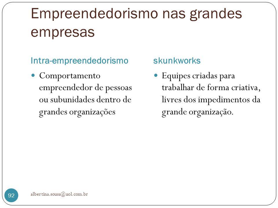 Empreendedorismo nas grandes empresas Intra-empreendedorismoskunkworks Comportamento empreendedor de pessoas ou subunidades dentro de grandes organiza