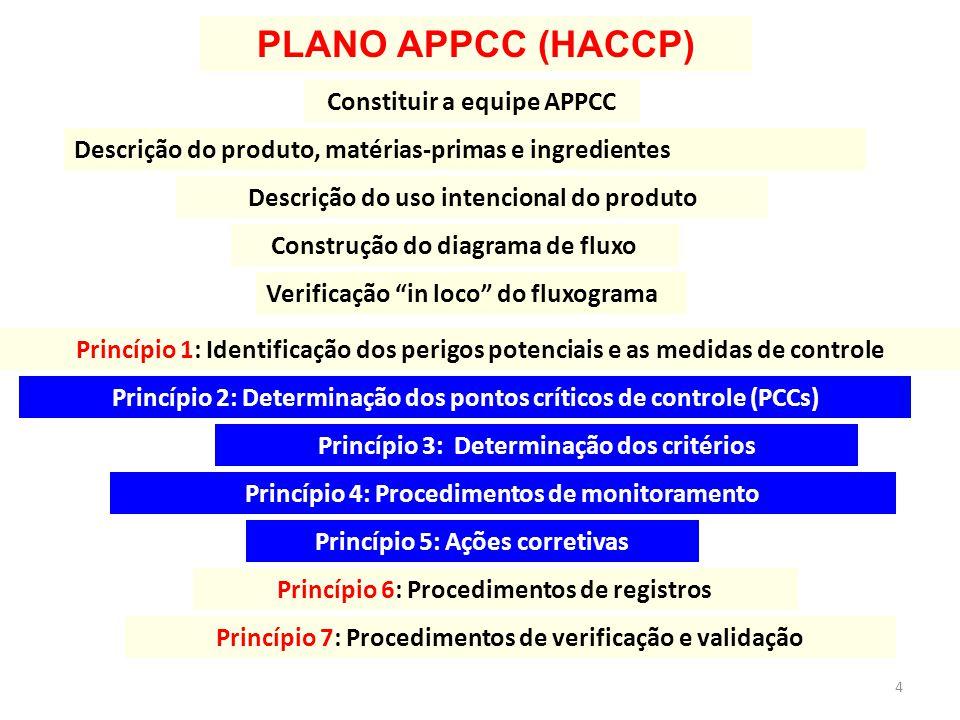 PLANO APPCC (HACCP) Constituir a equipe APPCC Descrição do uso intencional do produto Construção do diagrama de fluxo Princípio 1: Identificação dos p