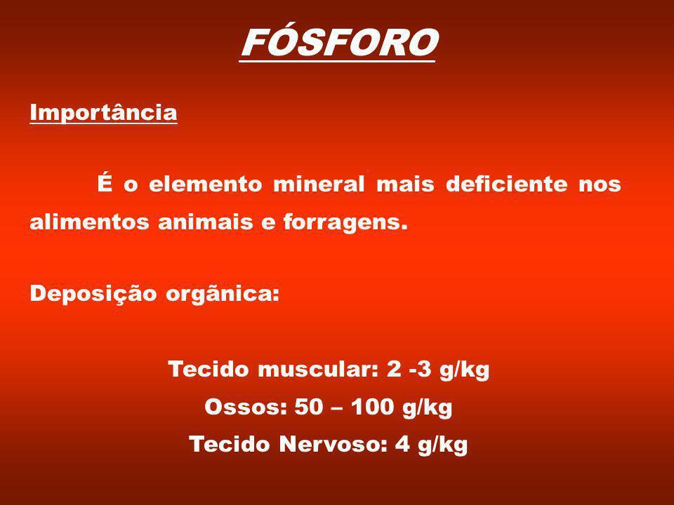 FÓSFORO Importância É o elemento mineral mais deficiente nos alimentos animais e forragens.