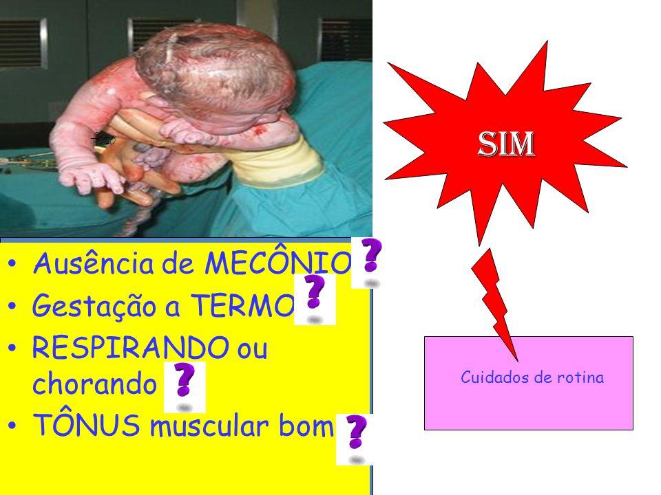 Ausência de MECÔNIO Gestação a TERMO RESPIRANDO ou chorando TÔNUS muscular bom foto sim Cuidados de rotina