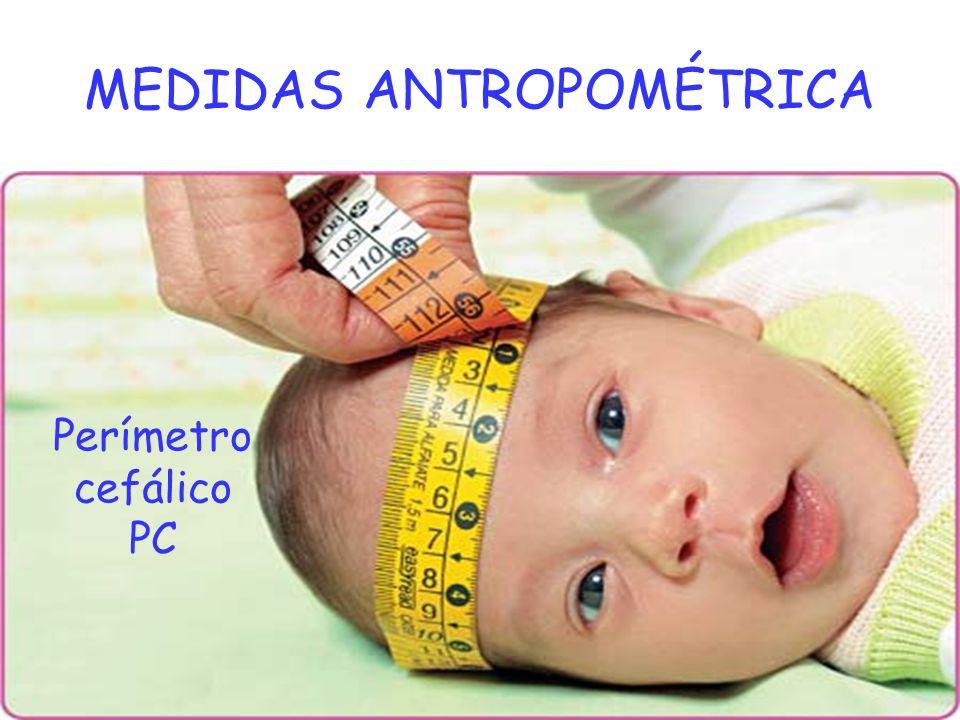 MEDIDAS ANTROPOMÉTRICA Perímetro cefálico PC