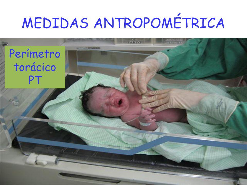 MEDIDAS ANTROPOMÉTRICA Perímetro torácico PT