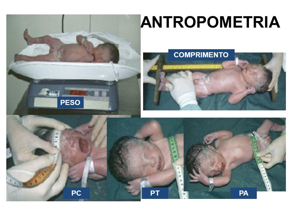 ANTROPOMETRIA PESO COMPRIMENTO PCPTPA