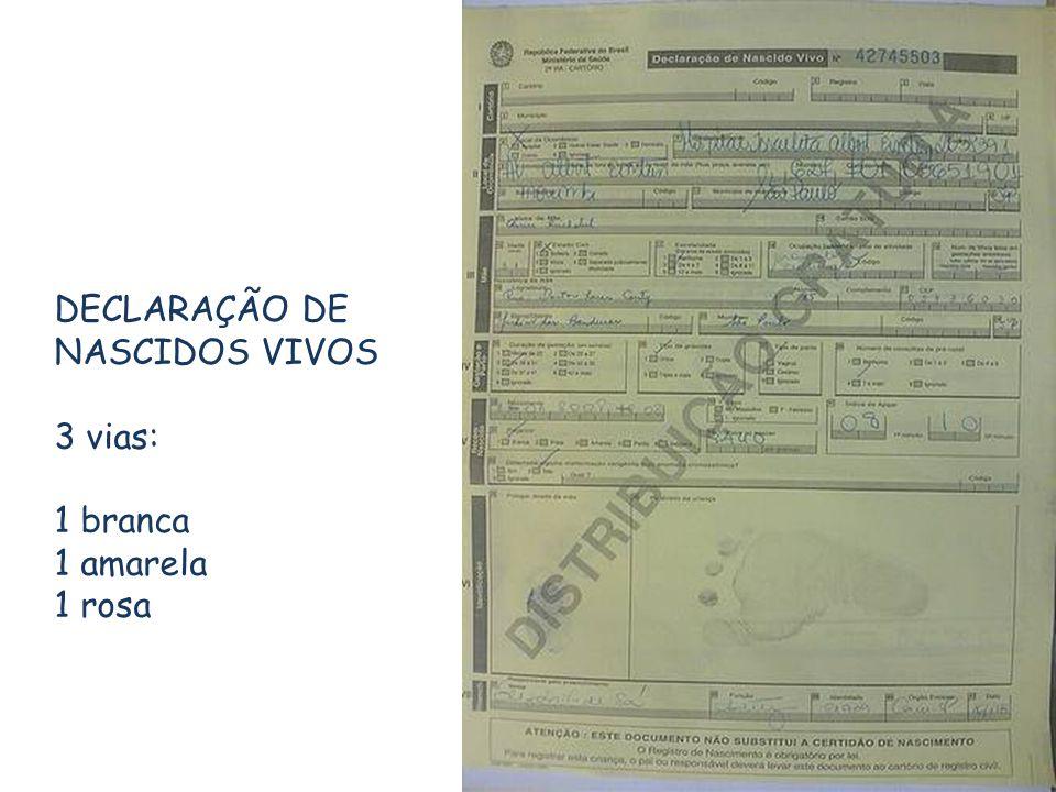 DECLARAÇÃO DE NASCIDOS VIVOS 3 vias: 1 branca 1 amarela 1 rosa