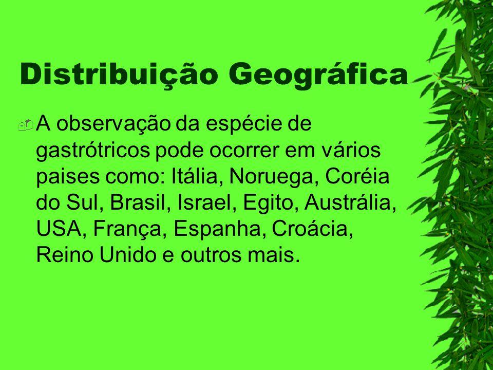 Distribuição Geográfica A observação da espécie de gastrótricos pode ocorrer em vários paises como: Itália, Noruega, Coréia do Sul, Brasil, Israel, Eg