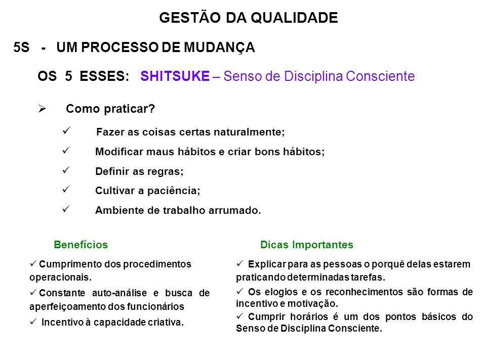 5S - UM PROCESSO DE MUDANÇA OS 5 ESSES: SHITSUKE – Senso de Disciplina Consciente Como praticar? Fazer as coisas certas naturalmente; Modificar maus h