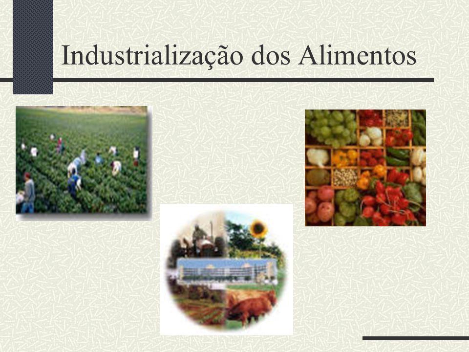 Como fator de Promoção Agrícola Permitir o aproveitamento dos excedentes no local da produção; Possibilitar o aproveitamento de subprodutos; Facilitar a implantação de indústrias rurais;