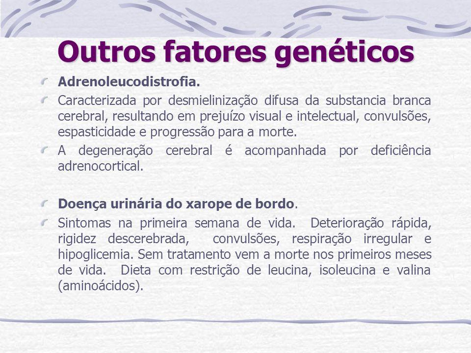 Outros fatores genéticos Adrenoleucodistrofia. Caracterizada por desmielinização difusa da substancia branca cerebral, resultando em prejuízo visual e