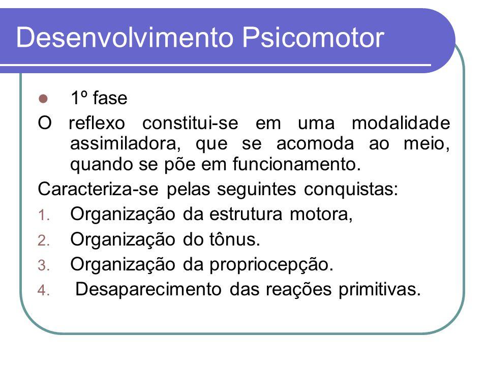 2ª fase: Organização do plano motor espaço-temporal das reações conhecimento relações sociais.